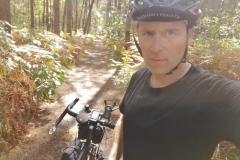 De passage en forêt